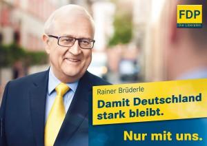 fdp-wahlplakat-bundestagswahl-2013-bruederle